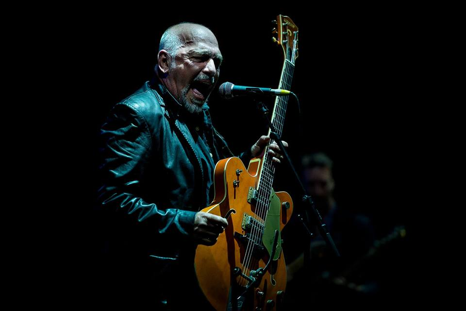 Live Shows: The Black Sorrows - Nov 21 - Doo-Bop Jazz Bar